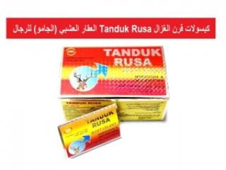 gold detectors 2021 primero - BR Detectors